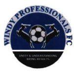 Windy Professionals